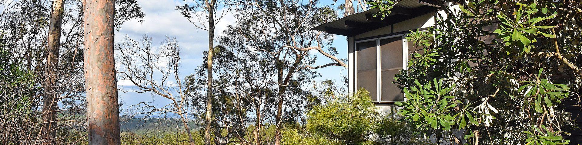 your treetop retreat awaits